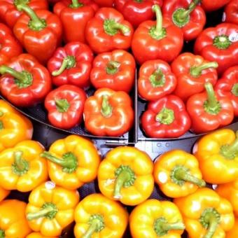 Świeże warzywa, sprawdzeni dostawcy